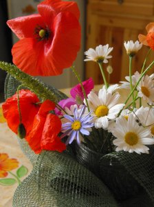 flores_01_05_2009-030